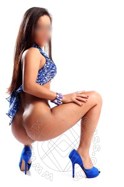 Amy Sexy  SONDRIO 3511101040